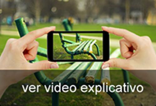 Video Línea Verde